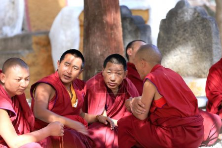 Monks discussing in the Sera monastery-Tibet. 1283