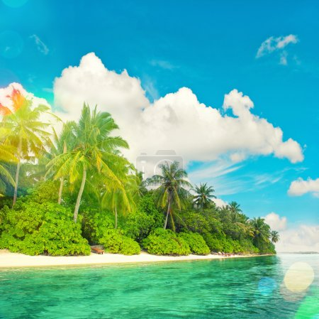 Tropical island beach landscape with palm trees.