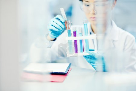 Photo for Young scientist working with new liquid chemical substances - Royalty Free Image
