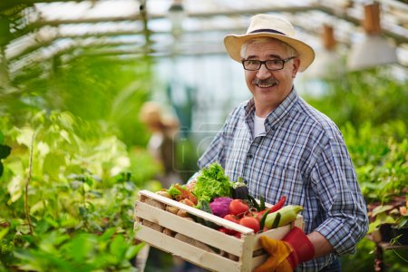 Mature farmer with vegetables