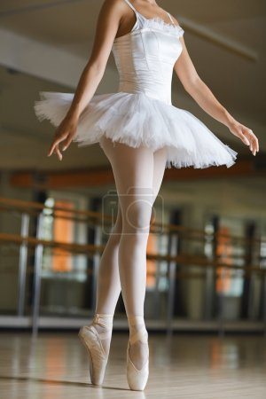 ballerina exercising in class
