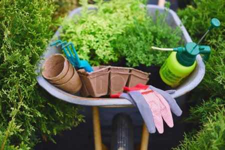 gardening equipment in wheelbarrow