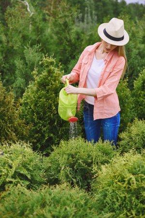 Photo pour Jeune femme jardinier arrosage des plantes vertes dans le jardin - image libre de droit