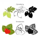 Vector set strawberry gooseberry