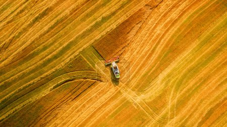 Photo for Harvester machine working in field . Combine harvester agriculture machine harvesting golden ripe wheat field. Agriculture. Aerial view. From above. - Royalty Free Image