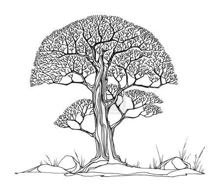 Dibujo a mano del árbol