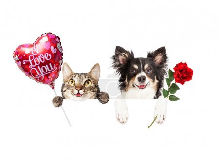 Valentines Cat and Dog with banner