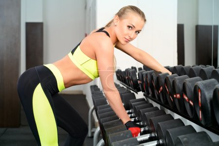 Photo for Slender young woman with beautiful athletic body doing exercises with dumbbells. Fitness, bodybuilding. Healthcare. - Royalty Free Image