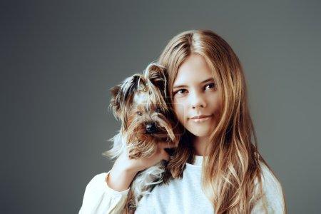 friendship.fash. Studio shot, yorkshire terrier dog.
