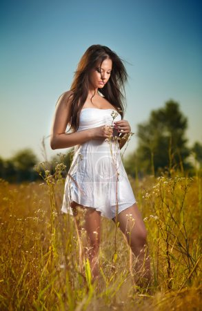Photo for Beautiful young woman in wild flowers field on blue sky background. Portrait of attractive brunette girl with long hair relaxing in nature, outdoor shot. Lady in white short dress enjoying nature - Royalty Free Image