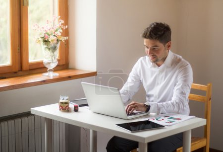 handsome businessman working at home