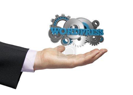 Wordpress-Geschäftsmann