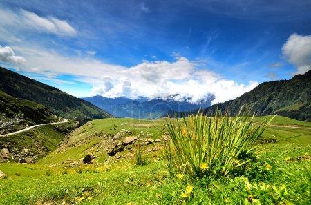 Himachal Pradesh, Manali, India
