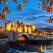 Famous Conwy Castle in Wales, United Kingdom, Wale...
