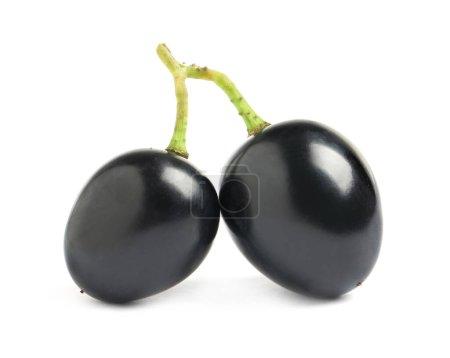 Photo pour Délicieux raisins bleu foncé isolé sur blanc - image libre de droit