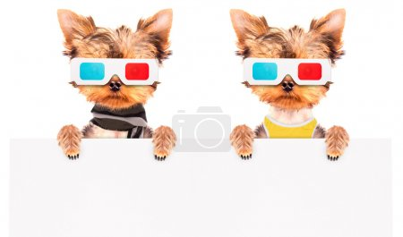 Photo for Dog going to the movies holding white paper banner - Royalty Free Image