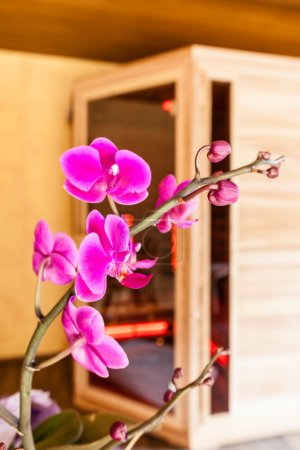 Orchid and sauna