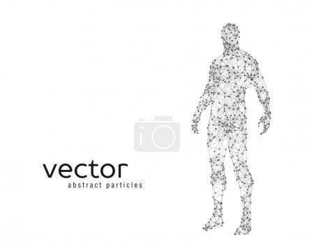 Illustration for Abstract vector illustration of human body on white background - Royalty Free Image