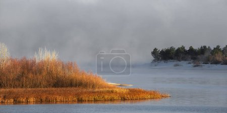 Photo for Winter frosty fog on an unfrozen river. Green Christmas trees and grass on the banks. Landscape nature. - Royalty Free Image