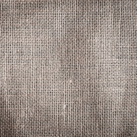 Burlap or sacking detail
