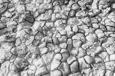 Texture of the salt of the earth