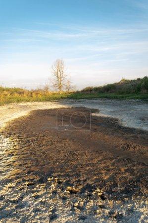 Steppe saline soils. saline  salt  in salt.  steppe  prairie  ve