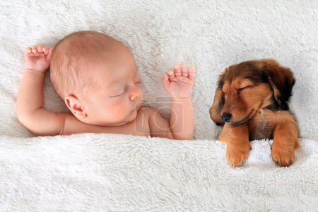 Sleeping newborn baby and puppy