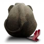 Slon sedící na branku Witch
