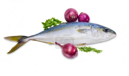 Whole round fish yellowtail, dill, parsley and red onion