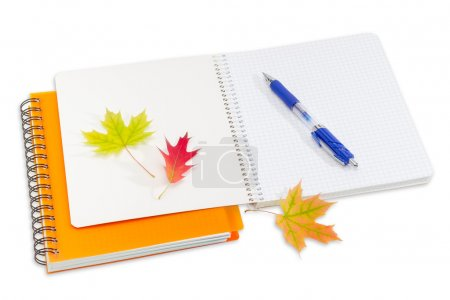 Two notebooks, pen and a few autumn leaves