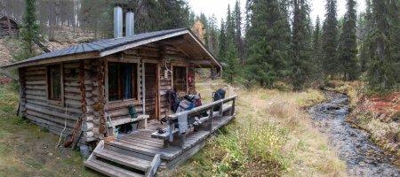 Log Cabin in Deep Taiga Forest