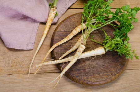 Fresh parsley with roots
