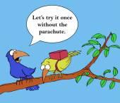 Bird life coach