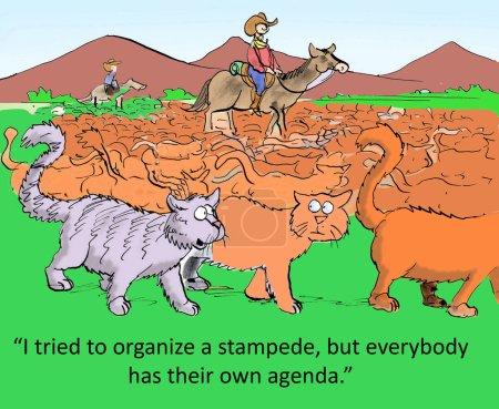 Cat tried to organize a stampede