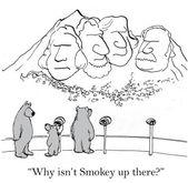 Smokey on Mount Rushmore