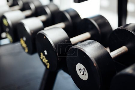 Dumbells set in gym