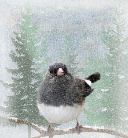 grauer Vogel hockt während der Wintersaison auf Gliedmaßen