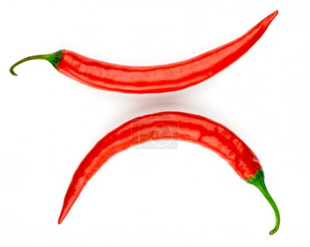 Photo for Chili pepper isolate - Royalty Free Image