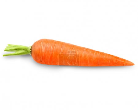 Photo for Carrots isolated on white background - Royalty Free Image