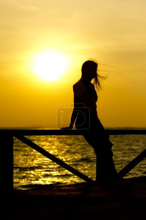 Stock Photo Stock Photo: Profile of a woman silhouette watching sun on the beach at sunset