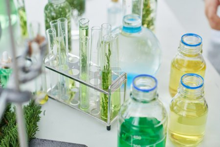 Chemical glassware and plants