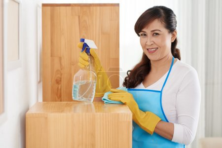 Housewife enjoying cleaning the house