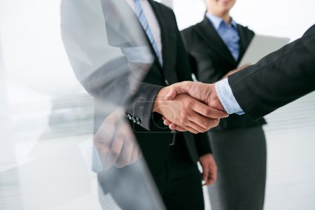 Entrepreneur shaking hand of partner