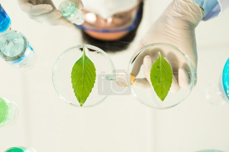 Scientist testing new reagent