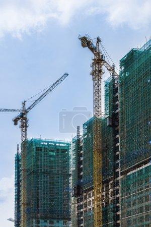 Two construction cranes