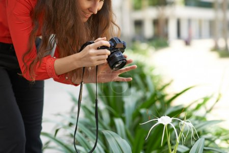 Woman photographing flower