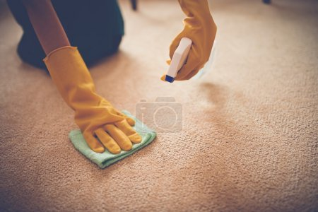 Photo for Close-up image of woman removing stain from the carpet - Royalty Free Image