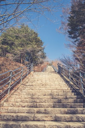 Gate to Chureito Pagoda in Winter, Fujiyoshida, Japan