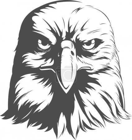 Eagle Silhouettes Vector - Front View
