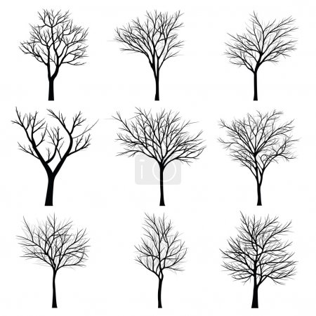 Illustration for Trees with dead branch - Royalty Free Image